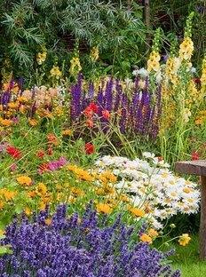 Domashny Ochag Holds «My Garden» Contest