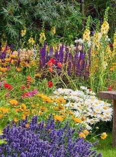 Конкурс «Мой сад» от«Домашнего Очага»
